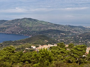 Elba-Panorama-header